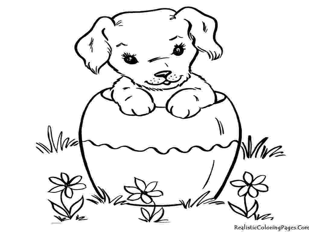 realistic puppy coloring pages realistic puppy drawing at getdrawingscom free for puppy pages realistic coloring