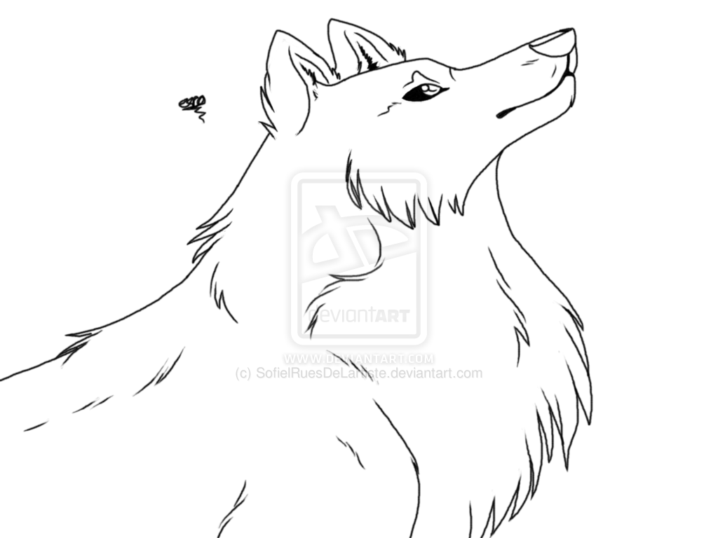 realistic wolf coloring pages arctic wolf coloring page free printable coloring pages realistic wolf coloring pages