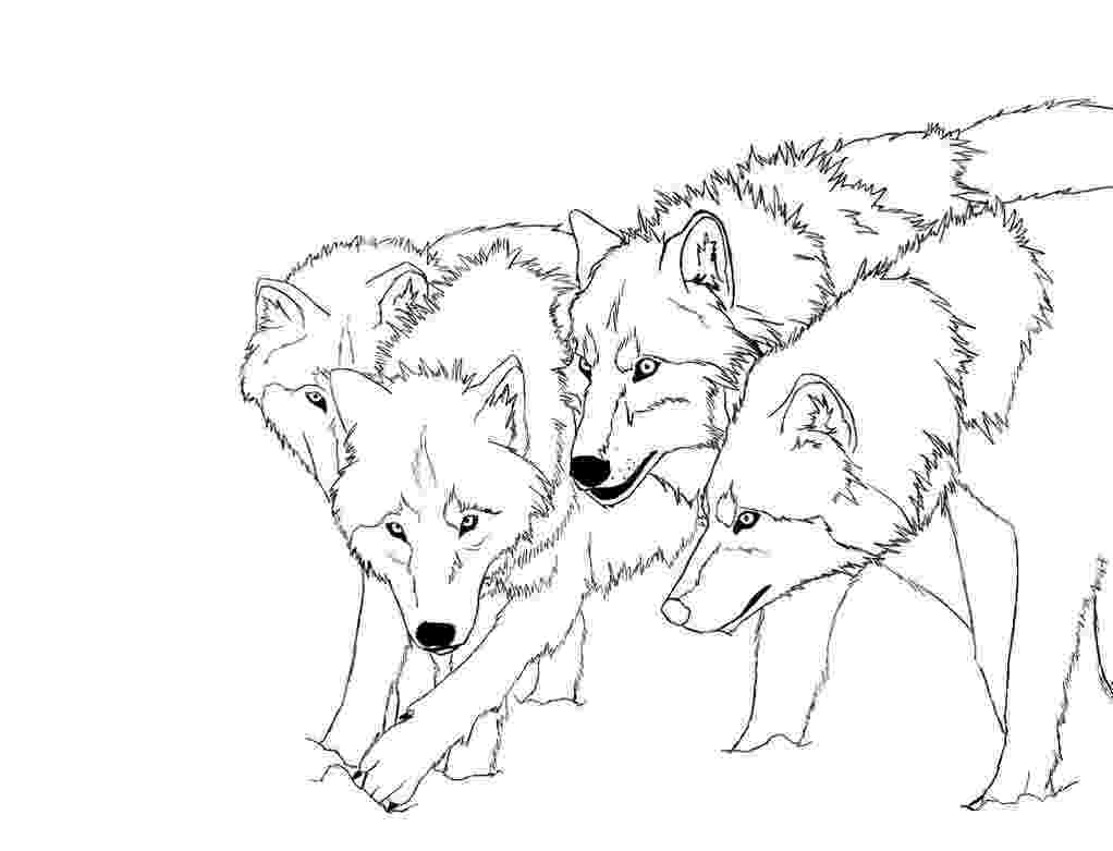 realistic wolf coloring pages realistic wolf coloring pages pictures to pin on pinterest wolf coloring realistic pages