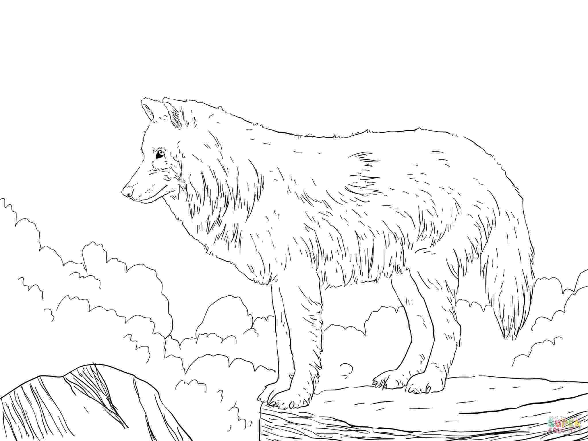 realistic wolf coloring pages realistic wolf coloring pages to print coloring home pages coloring realistic wolf