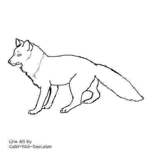 red fox coloring page fox coloring pages free printable page red coloring fox