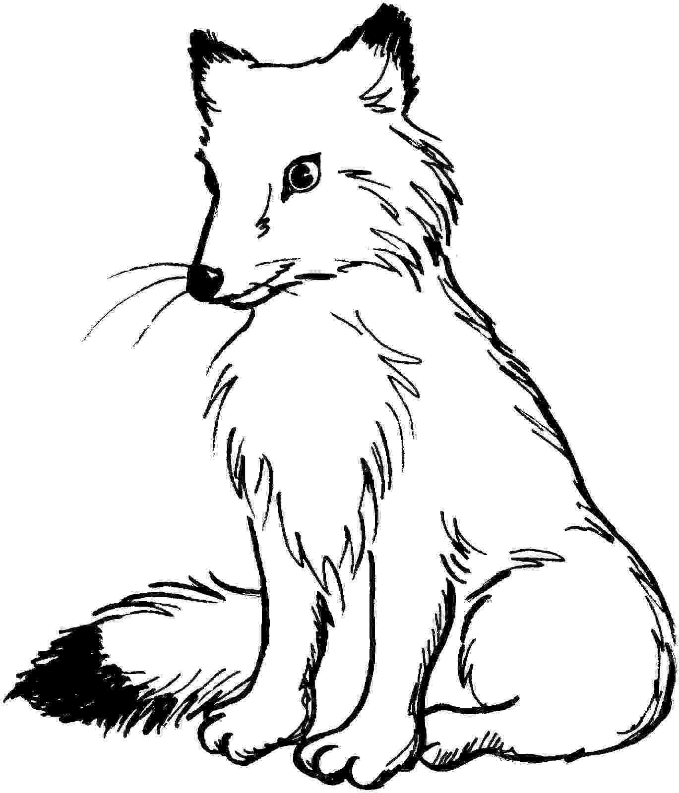 red fox coloring page fox red coloring page coloring fox red page