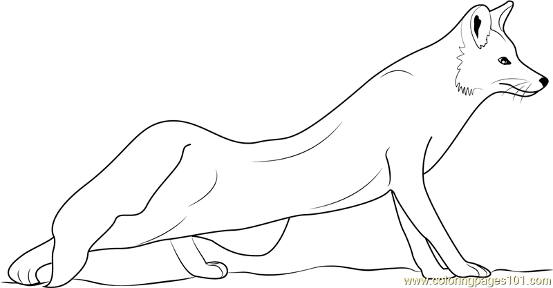 red fox coloring page free fox coloring pages coloring red fox page