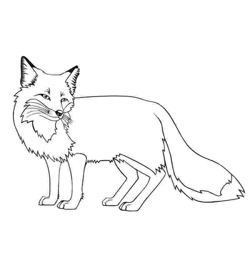 red fox coloring page red fox coloring page free printable coloring pages fox coloring page red