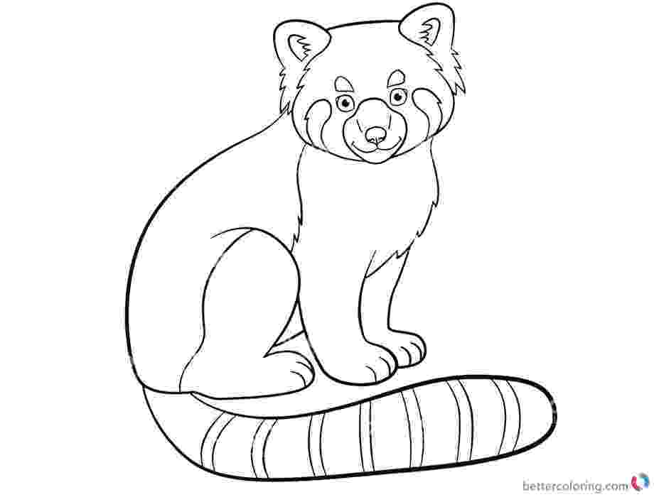red panda coloring pages cute red panda in baseball cap coloring page free pages panda red coloring