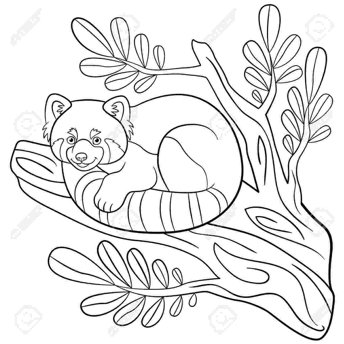 red panda coloring pages red panda on tree coloring page free printable coloring coloring red panda pages