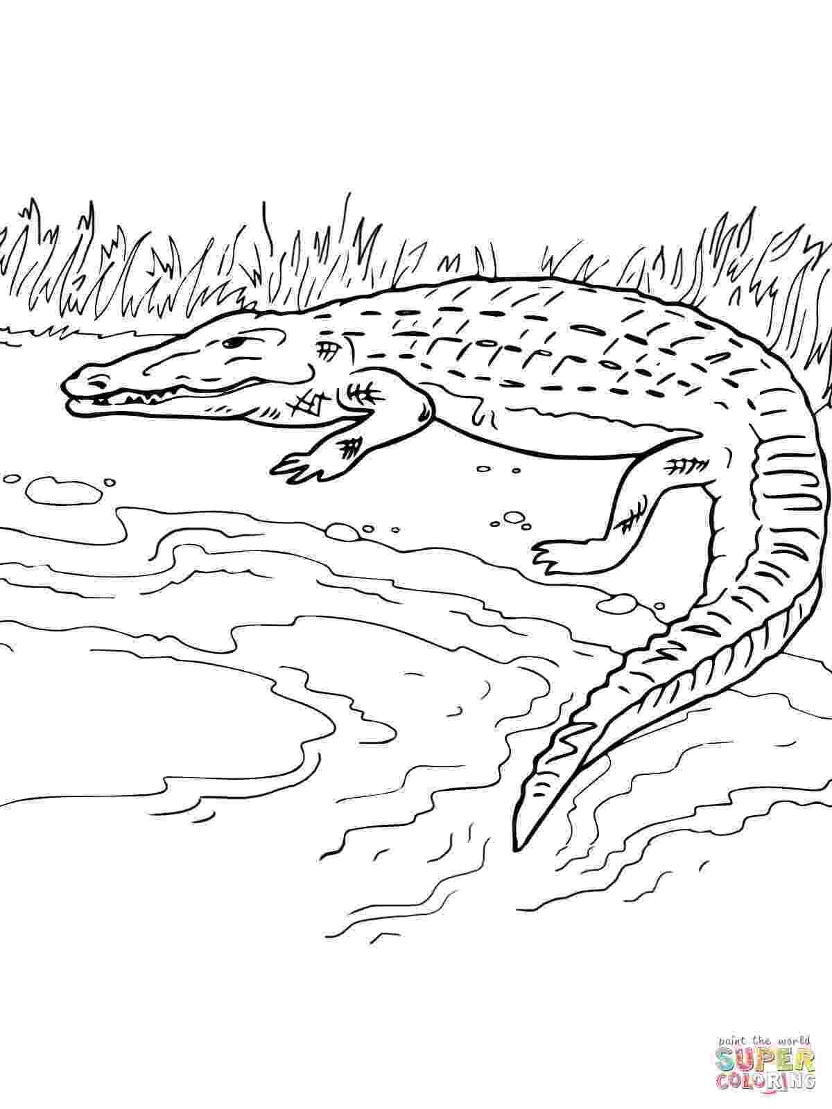 river coloring pages printable river coloring pages download and print river coloring pages river pages printable coloring
