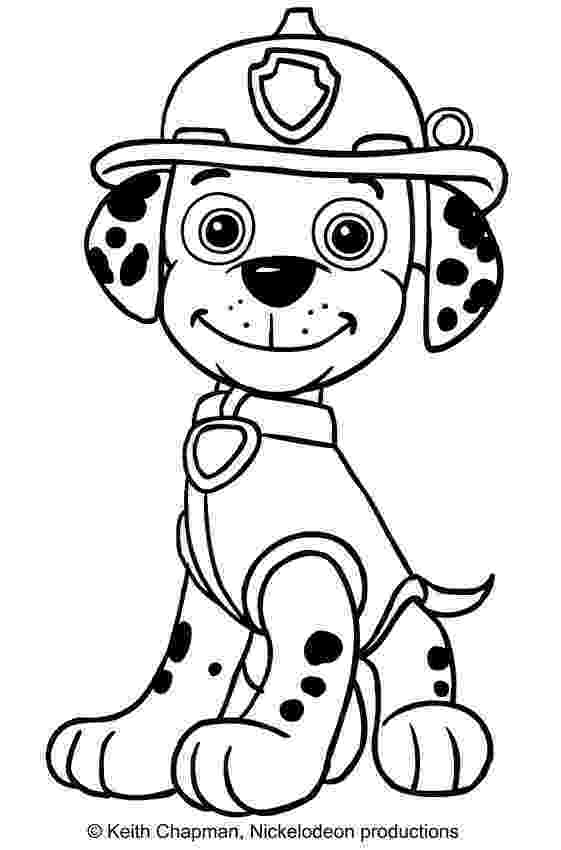 rocky from paw patrol paw patrol coloring pages paw from patrol rocky