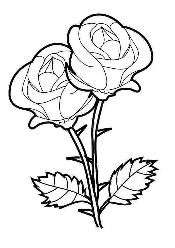 rose flower coloring pages free printable roses coloring pages for kids rose rose pages coloring flower