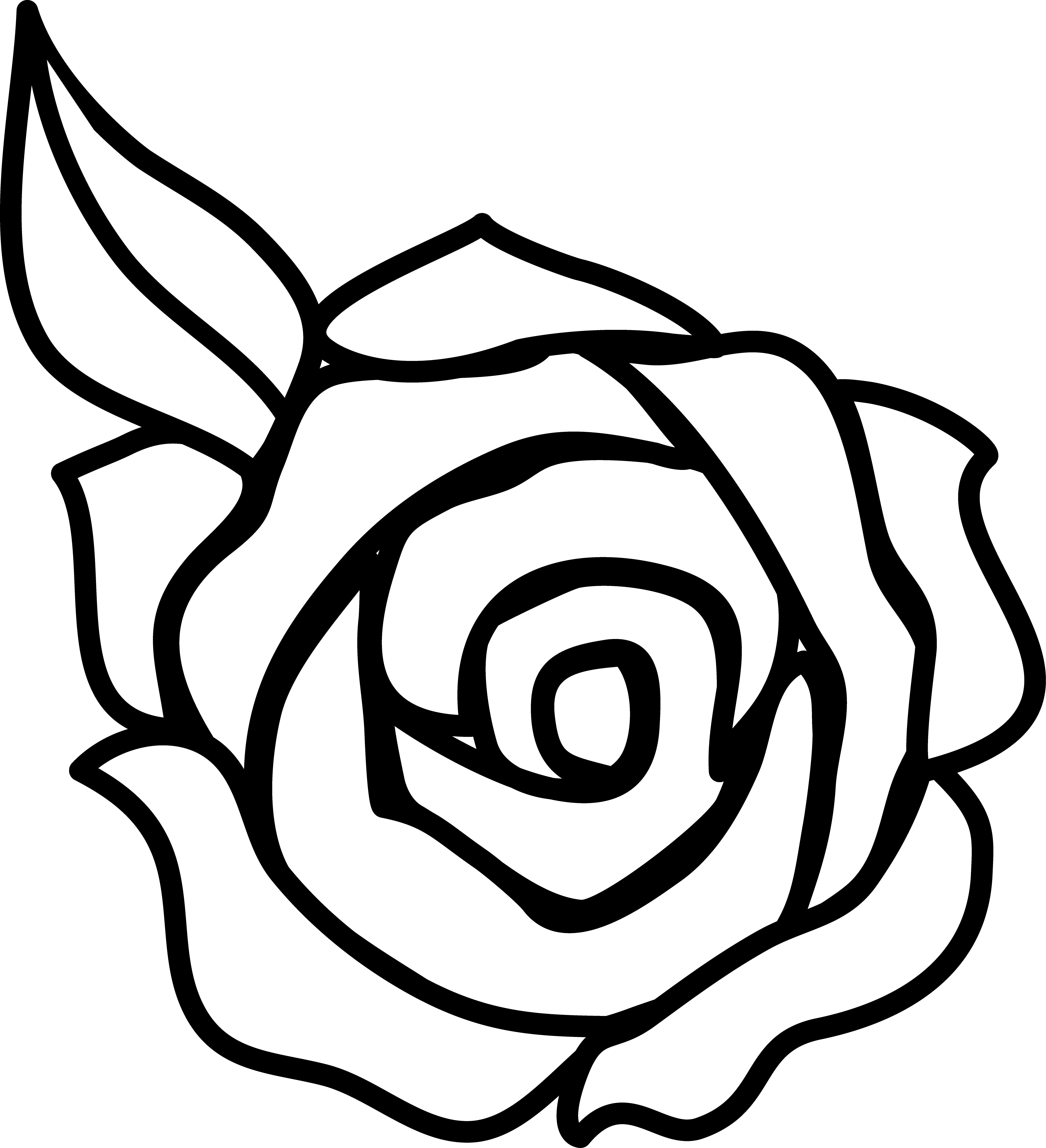rose pictures to trace attractive rose drawings design trends rose to pictures trace