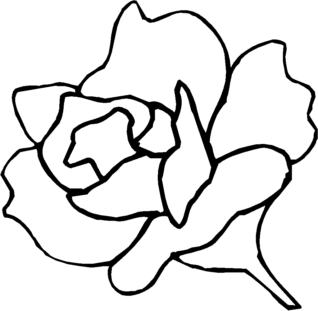 rose pictures to trace cheryl stevenson artist paper sculpture rose rose trace pictures to