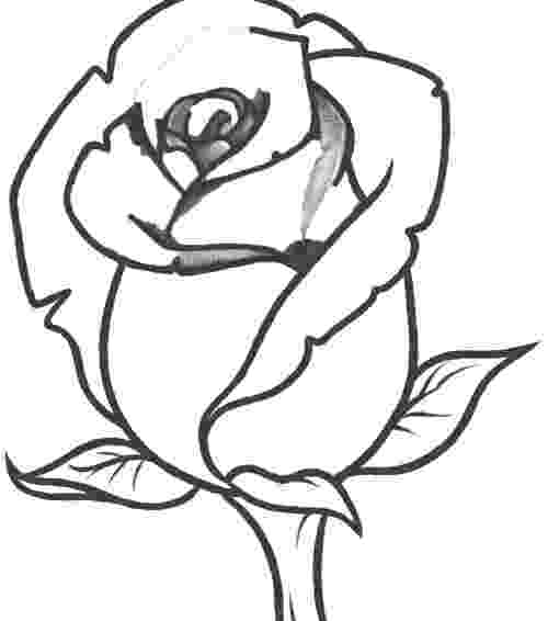 rose pictures to trace easy flowers to draw clipart best tracing pictures rose pictures to trace