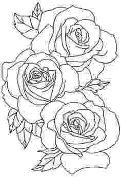 rose pictures to trace how to draw a realistic rose draw real rose step by step trace rose to pictures