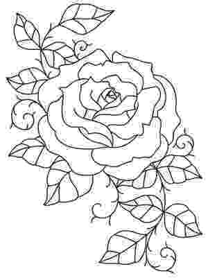 rose pictures to trace how to draw a rose easy step by step drawing lessons for to trace rose pictures