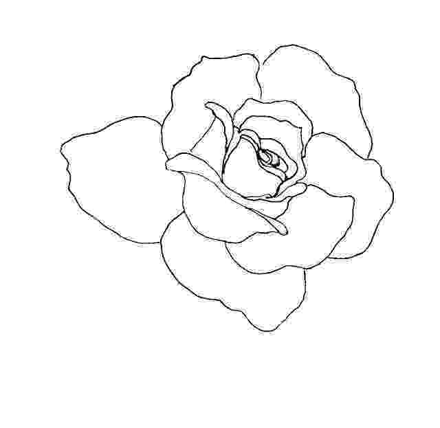 rose pictures to trace just and rose draft trace by purplegothgoddess on deviantart rose to trace pictures