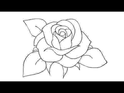 rose pictures to trace pictures of roses to trace wallpapers gallery rose pictures to trace