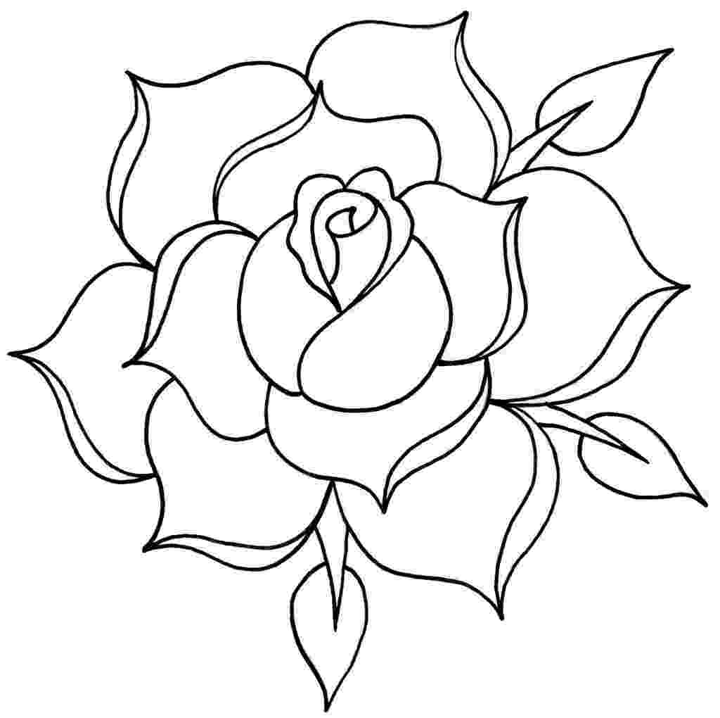 rose pictures to trace vector roses trace freehand drawing stock vector 24179413 trace pictures to rose