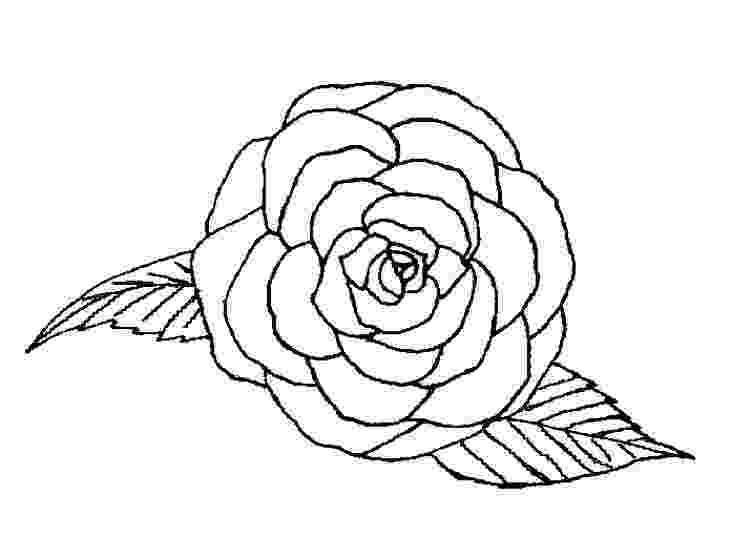 rose print out printable rose coloring pages for kids cool2bkids print rose out