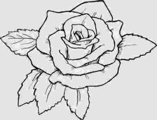 rose print out roses coloring pages pinterest tumblr google yahoo imgur print rose out