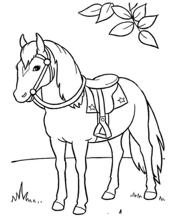 saddle coloring pages horse saddle horses horse coloring pages animal coloring pages saddle
