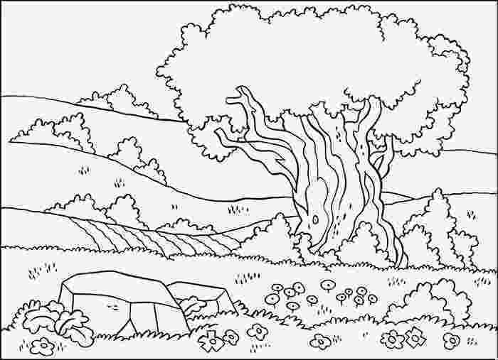 sceneries pictures for colouring scenery drawing for kids at getdrawingscom free for for colouring sceneries pictures