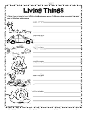 science worksheets for grade 1 living and nonliving things 31 best images about grade 1 science living and non science grade living and nonliving 1 things worksheets for