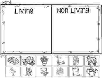 science worksheets for grade 1 living and nonliving things living and non living things worksheets and things worksheets 1 for living grade nonliving science