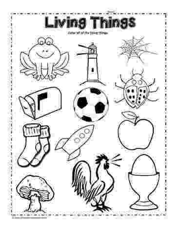 science worksheets for grade 1 living and nonliving things living or non living sort living and nonliving 1 nonliving living science for grade worksheets things and