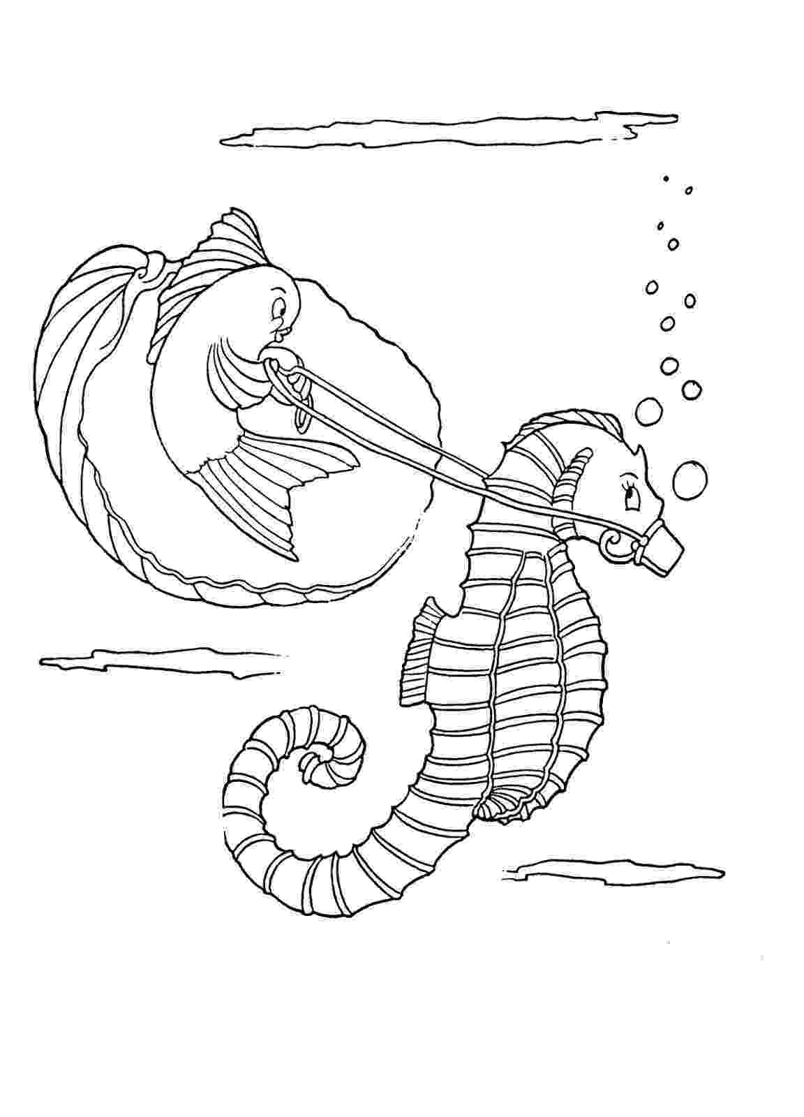 sea horse coloring pages kids printable seahorse coloring page the graphics fairy pages sea coloring horse