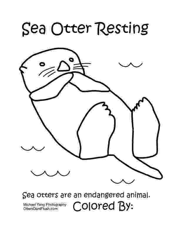 sea otter coloring pages 11 pics of easy sea otter coloring pages sea otter otter pages sea coloring