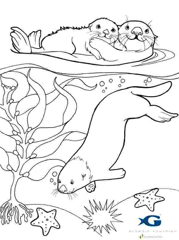 sea otter coloring pages otter coloring pages download and print for free sea otter pages coloring