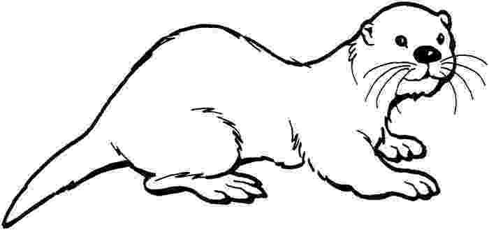 sea otter coloring pages sea otter coloring page free printable coloring pages otter coloring pages sea