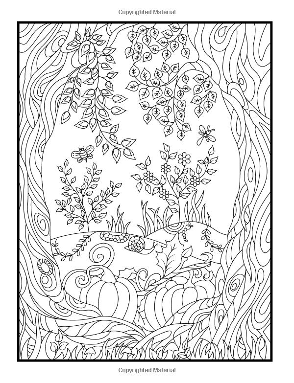 secret garden coloring book animals amazoncom hidden garden an adult coloring book with animals book secret garden coloring