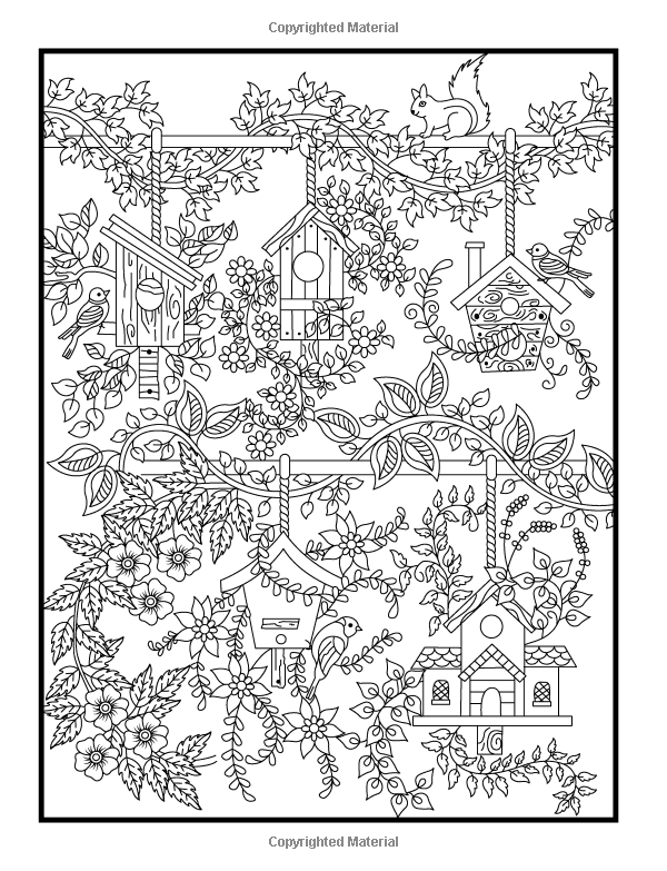 secret garden coloring book animals amazoncom hidden garden an adult coloring book with animals coloring book garden secret