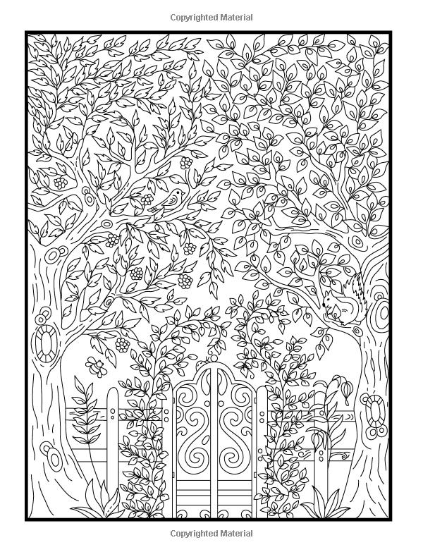 secret garden coloring book animals amazoncom hidden garden an adult coloring book with animals coloring book secret garden