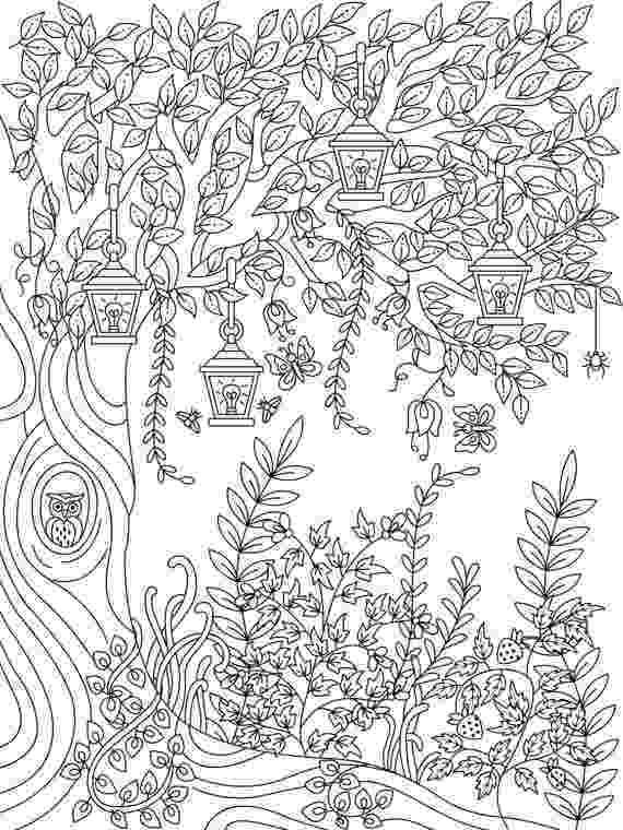 secret garden coloring book animals hidden garden an adult coloring book with secret forest animals garden secret book coloring