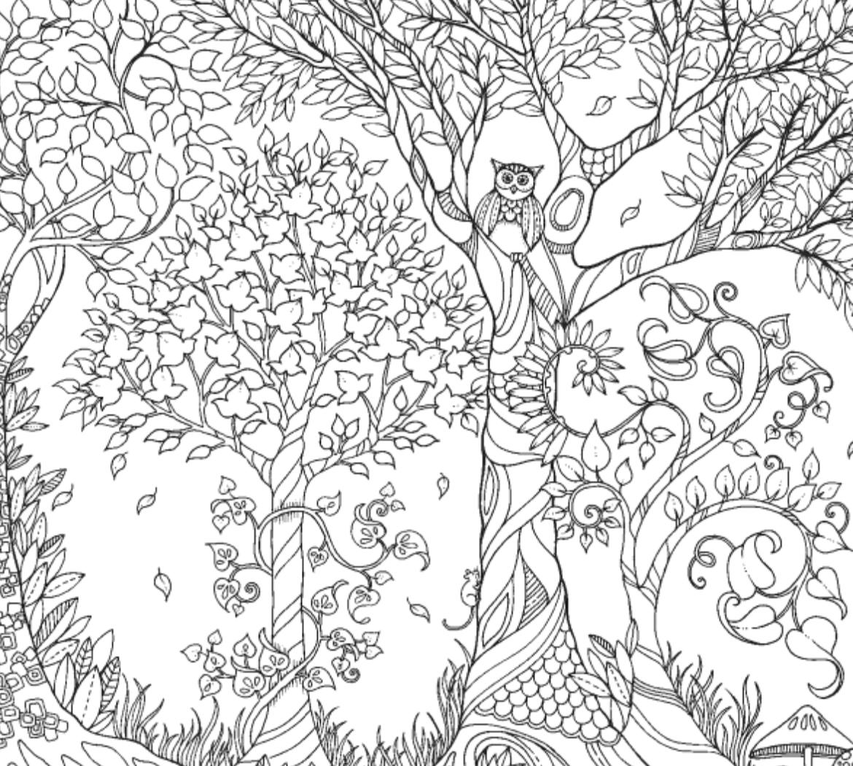 secret garden coloring book animals inspirational coloring pages from secret garden enchanted coloring garden book secret animals