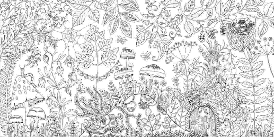 secret garden coloring book animals johanna basford enchanted forest secret garden addictive book coloring garden animals secret