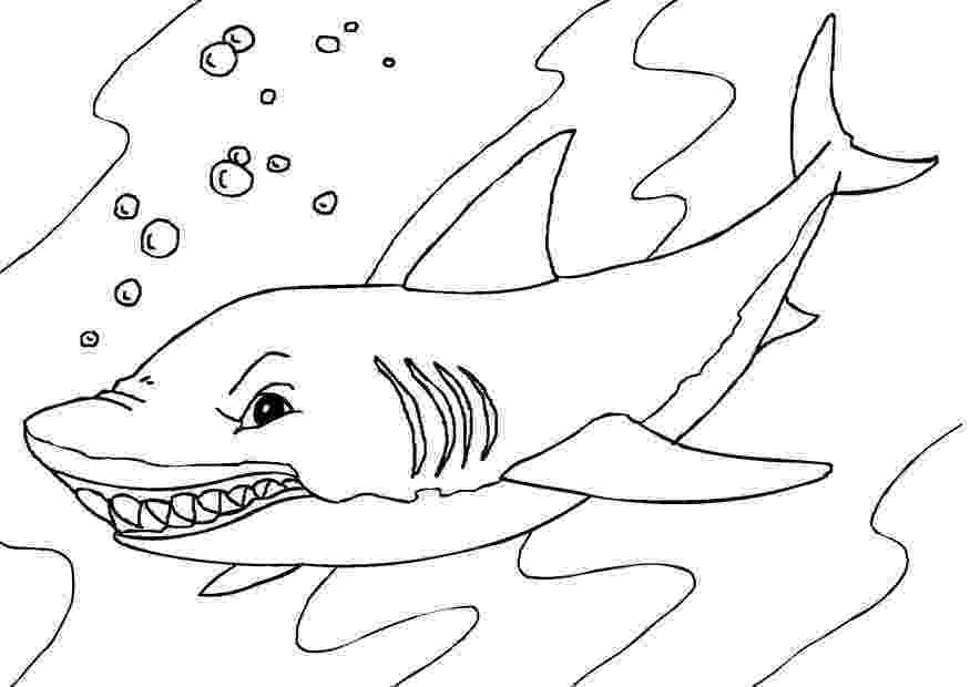 shark picture to color easy shark coloring page free printable coloring pages shark to picture color
