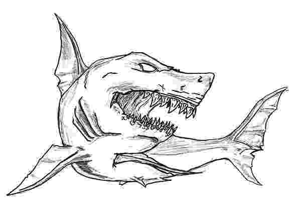 shark picture to color free printable shark coloring pages for kids color picture shark to