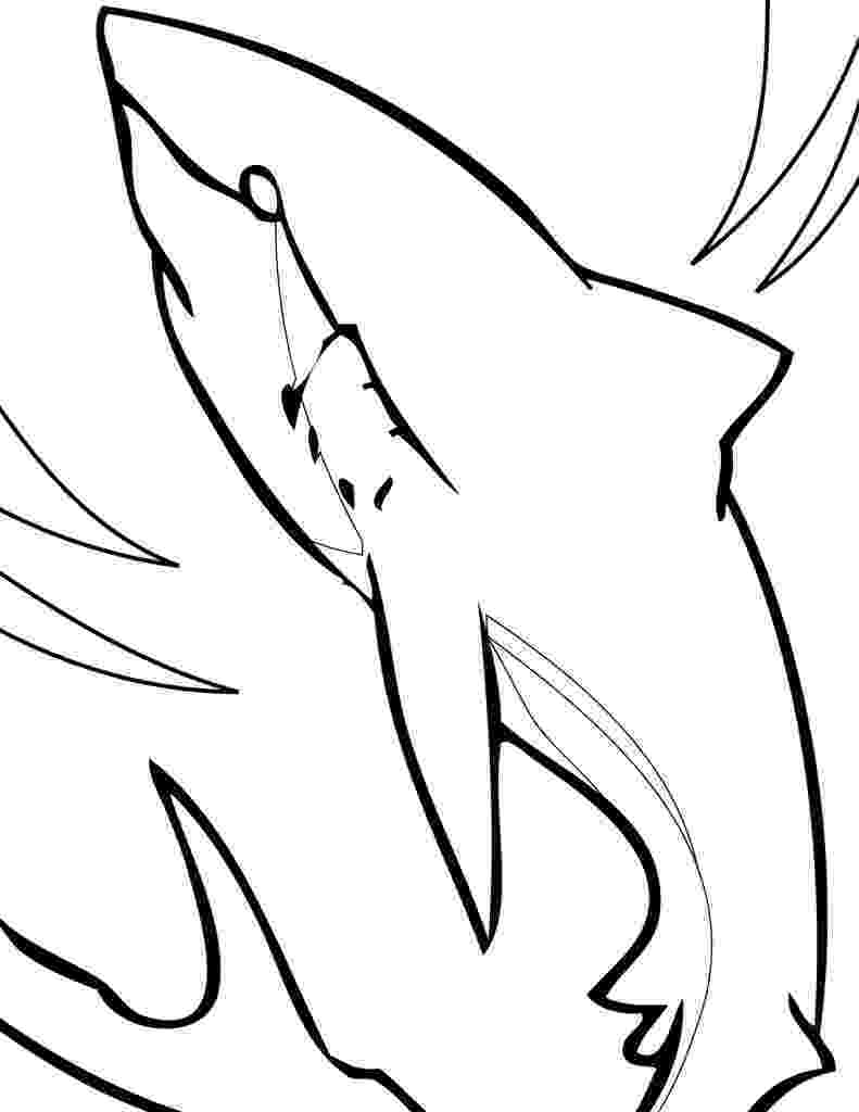 shark picture to color prev next baby great white shark coloring pages bedroom color picture shark to