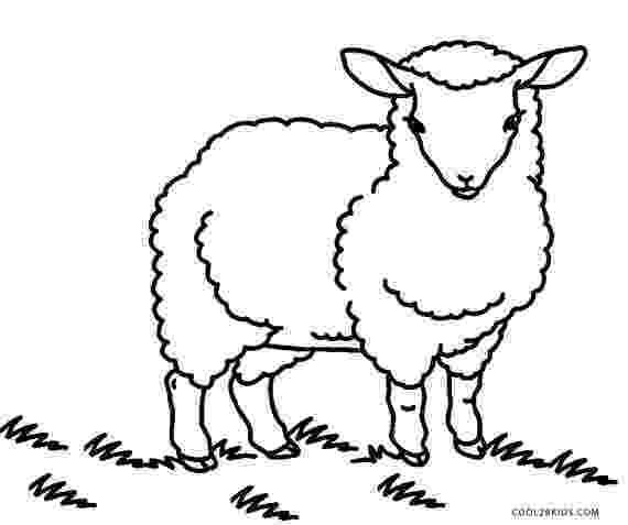 sheep coloring sheet free printable sheep coloring pages for kids sheet coloring sheep 1 1
