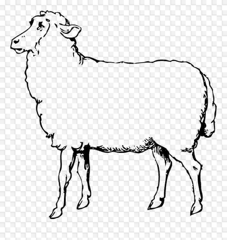sheep printable clipart sheep printable clipart sheep printable printable sheep