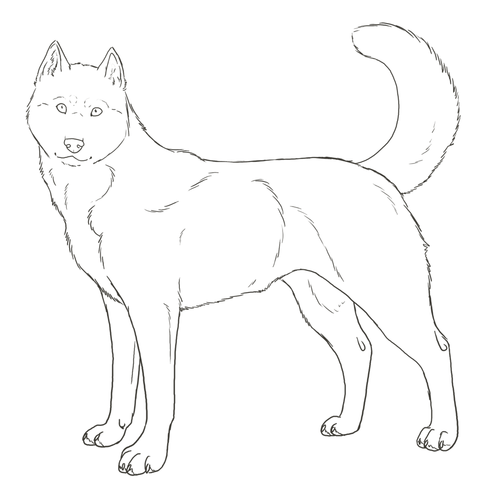 siberian husky coloring pages siberian husky coloring pages coloring home pages siberian husky coloring