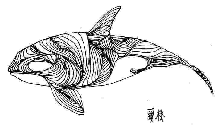 sketch of a whale 1000 images about pencil sketch on pinterest a whale sketch of