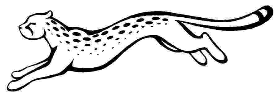 sketch of cheetah cheetah running sketch by arcroto on deviantart of cheetah sketch