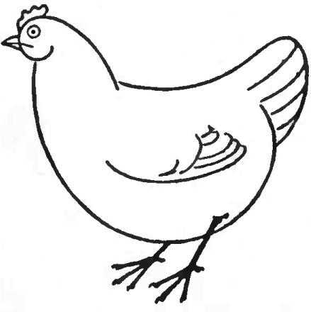sketch of hen hen line drawing clipart best of sketch hen