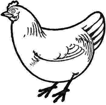 sketch of hen how to draw a chicken draw chickens sketch of hen