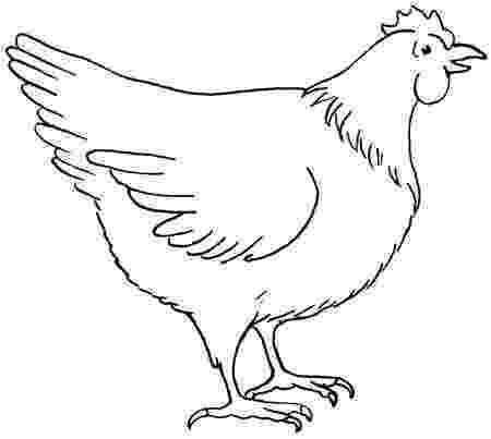 sketch of hen kippetje chickie pen en oost indische inkt 2013 my hen sketch of