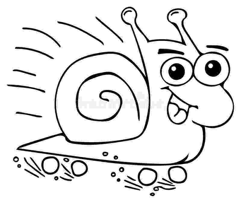 snail pictures to color snail coloring page butterfly coloring page insect pictures color to snail